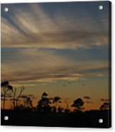Patterned Skies Acrylic Print