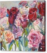 Paul's Roses II Acrylic Print