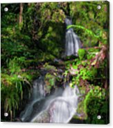 Peace And Tranquility Too Acrylic Print
