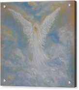 Peace From An Angel  Acrylic Print