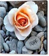 Peace Rocks Acrylic Print