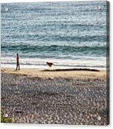 Peaceful Beaches Acrylic Print