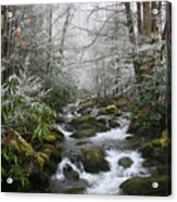 Peaceful Flow Acrylic Print