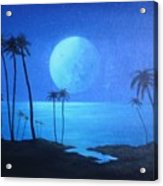 Peaceful Moonlit Night Acrylic Print by Michael Odom