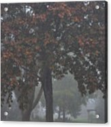 Peaceful Morning Mist Acrylic Print