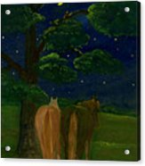 Peaceful Night Acrylic Print by Anna Folkartanna Maciejewska-Dyba