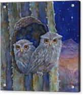 Peaceful Night Acrylic Print