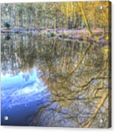 Peaceful Pond Reflections  Acrylic Print