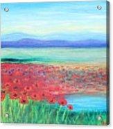 Peaceful Poppies Acrylic Print