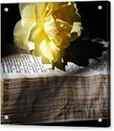 Peaceful Reading Acrylic Print
