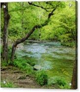 Peaceful Scene Acrylic Print