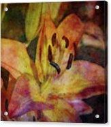 Peach And Yellow 2625 Idp_2 Acrylic Print