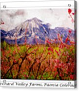 Peach Blossoms And Mount Lamborn Orchard Valley Farms Acrylic Print