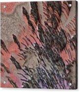 Peach Bombshell Acrylic Print