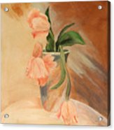 Peach Tulips Acrylic Print