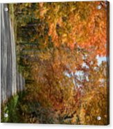 Peacham Side Road Acrylic Print