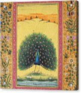 Peacock Dancing Painting Flower Bird Tree Forest Indian Miniature Painting Watercolor Artwork Acrylic Print