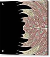 Peacock Fade  Acrylic Print