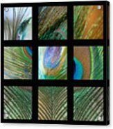 Peacock Feather Mosaic Acrylic Print