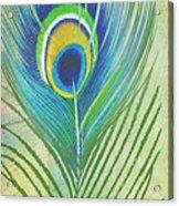 Peacock Feathers-jp3609 Acrylic Print
