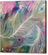 Peacock Feathers Pastel Acrylic Print