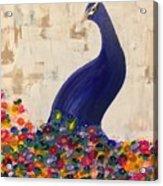 Peacock In My Garden Acrylic Print