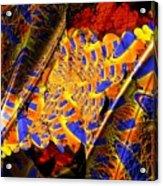 Peacock Parts Acrylic Print