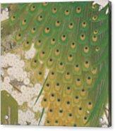 Peacocks And Cherry Tree Acrylic Print