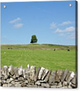 Peak District Landscape Acrylic Print