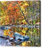 Peak Fall Foliage At The Black River Acrylic Print