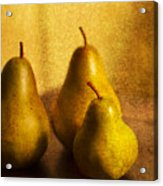Pear Trio Acrylic Print by Rebecca Cozart