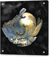 Pearl Egg Lizard Acrylic Print