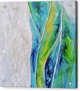 Pearl Falls Acrylic Print