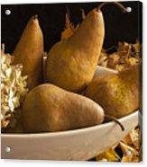 Pears And Hydrangea Still Life  Acrylic Print