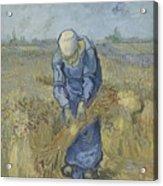 Peasant Woman Binding Sheaves After Millet Saint Remy De Provence  September 1889 Vincent Van Gogh Acrylic Print