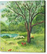 Pedro's Tree Acrylic Print