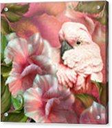 Peek A Boo Cockatoo Acrylic Print