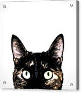 Peeking Cat Acrylic Print