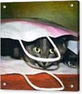 Peeping Out Acrylic Print