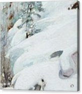 Pekka Halonen, Winter Landscape Acrylic Print