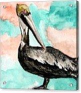 Pelican 3 Acrylic Print