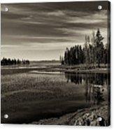 Pelican Bay Morning - Yellowstone Acrylic Print