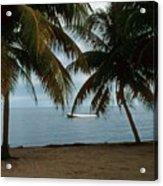 Pelican Beach Belize Acrylic Print