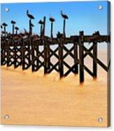 Pelican Pier Near Pass Christian - Mississippi Acrylic Print
