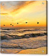 Pelicans At Sunrise  Signed 4651b 2  Acrylic Print