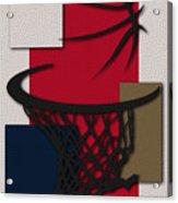 Pelicans Hoop Acrylic Print