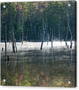 Pemigewasset Wilderness - White Mountains New Hampshire Usa Acrylic Print