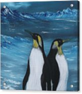Penguin Family Expectant Again Acrylic Print by Cynthia Adams