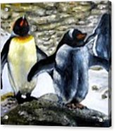 Penguines Original Oil Painting Acrylic Print