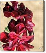Penny Postcard Acrylic Print